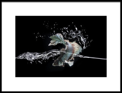 Buy this art print titled Splash by the artist shikhei goh
