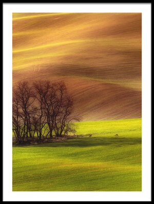 Buy this art print titled Spring by the artist Piotr Krol (Bax)