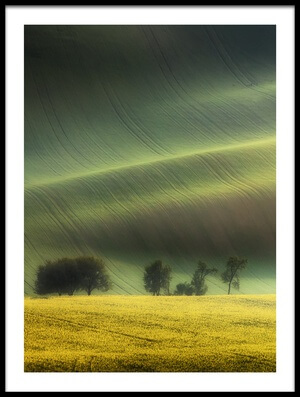 Art print titled Spring Fields by the artist Piotr Krol (Bax)