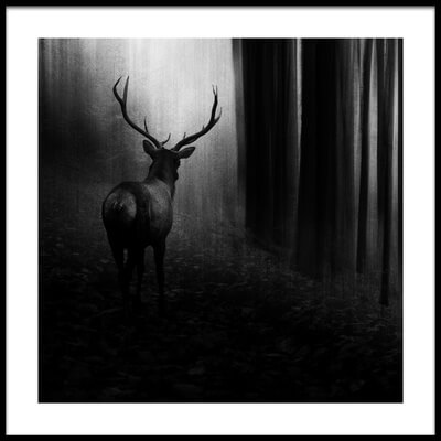 Buy this art print titled Stag by the artist Doris Reindl