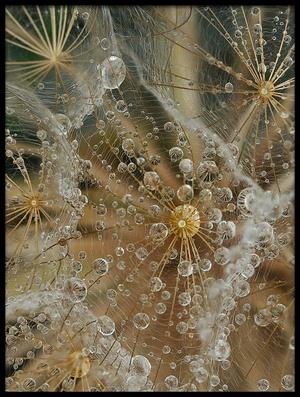 Art print titled Starless by the artist El Filósofo
