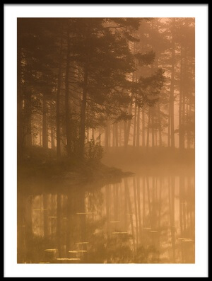Art print titled Sun & Mist by the artist Andreas Christensen