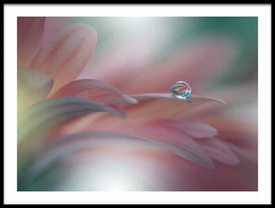 Buy this art print titled SunbeamII by the artist Juliana Nan