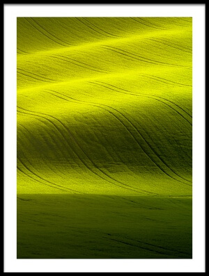 Art print titled Sunlight by the artist Peter Banny