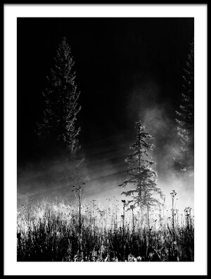 Buy this art print titled Sunrise In the Forest by the artist Julien Oncete