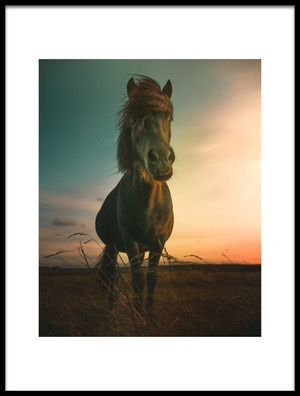 Buy this art print titled Sunset by the artist Marcus Hennen