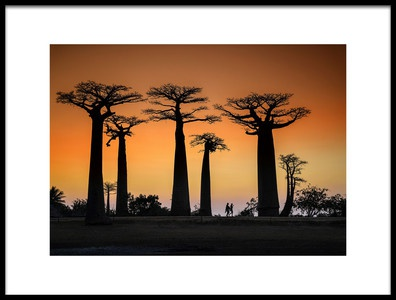 Art print titled Sunset In Morondava by the artist Raymond Ren Rong Liu
