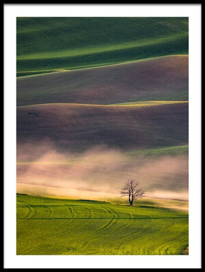Buy this art print titled Sunset In Palouse by the artist April Xie
