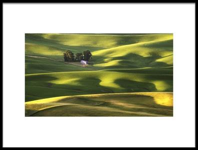 Art print titled Sunshine by the artist Aidong Ning