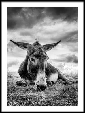 Art print titled Taking a Break by the artist Kurt Mortier