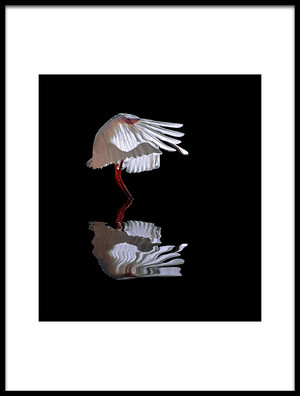 Buy this art print titled The Ave by the artist Juan Luis Duran