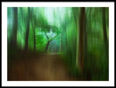 Art print titled The Blured Forest Path by the artist Leif Løndal