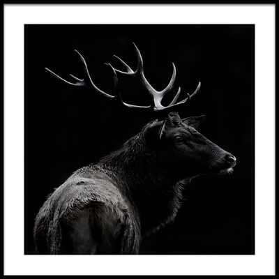 Buy this art print titled The Deer Soul by the artist Massimo Mei