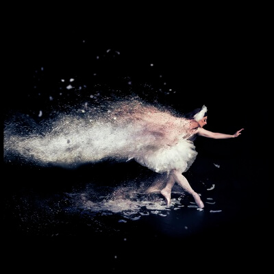 Buy this art print titled The Dying Swan by the artist Zoltan Tot