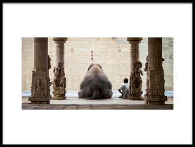 Art print titled The Elephant & Its Mahot by the artist ruhan