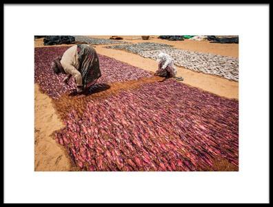Buy this art print titled The Fishermen of Negombo, Sri Lanka  a Life of Sacrifice  Nora De Angelli  Wwwnoraphotoscom by the artist Nora De Angelli