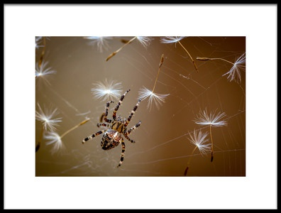 Buy this art print titled The Flies Are Finished Only Dandelions Salad Left by the artist Dmitry Skvortsov