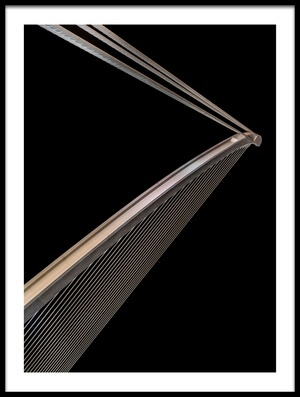 Buy this art print titled The Harp by the artist Holger Schmidtke