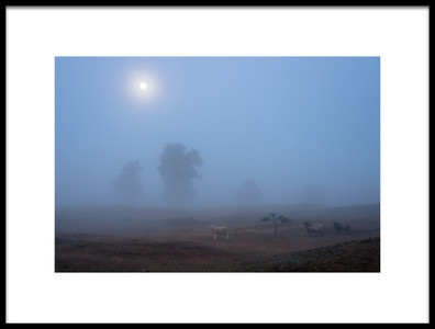 Art print titled The Last Moonlight  by the artist Piet Haaksma