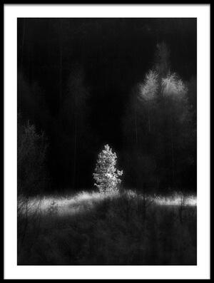 Art print titled The Last Ray by the artist Anna Kudriavtseva
