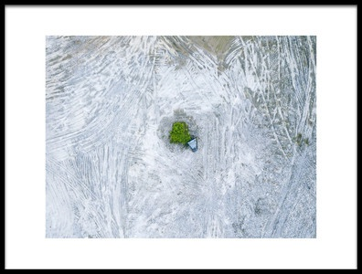 Art print titled The Last Tree and Trash Can by the artist Zhou Chengzhou