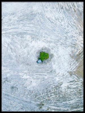 Buy this art print titled The Last Tree and Trash Can by the artist Zhou Chengzhou