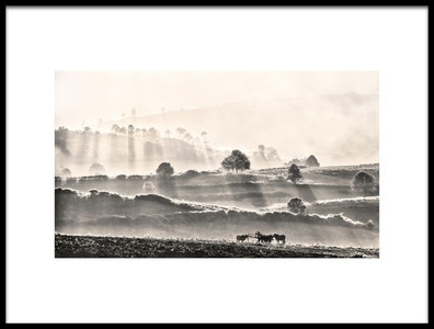 Art print titled The Oxdriver by the artist Lou Urlings