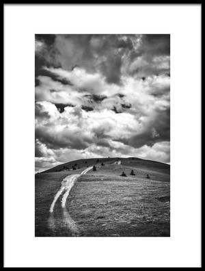 Buy this art print titled The Path by the artist Alessandro Passerini
