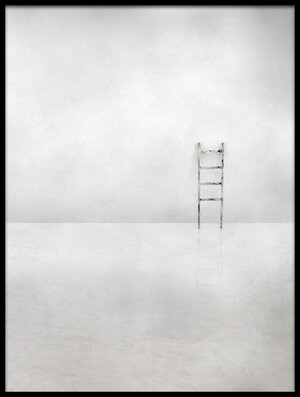 Buy this art print titled The Social Ladder by the artist Gilbert Claes