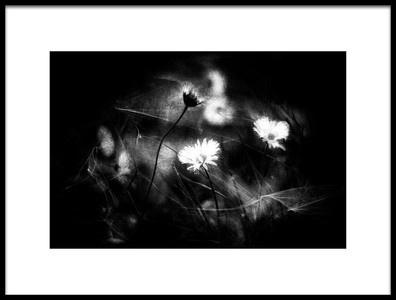 Art print titled The Splinters of the Night by the artist Elhanan S.R.