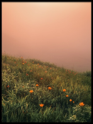 Buy this art print titled The Story of the Foggy Morning II by the artist Krovlin Andrey