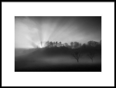 Art print titled The Sun In the Fog by the artist Nic Keller