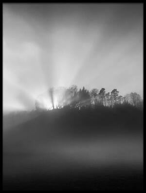 Buy this art print titled The Sun In the Fog by the artist Nic Keller