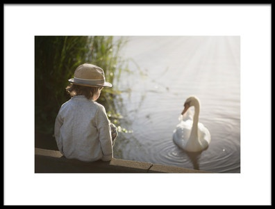 Art print titled The Swan by the artist Lynne williams