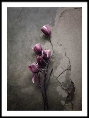Art print titled The Tulip by the artist kahar lagaa