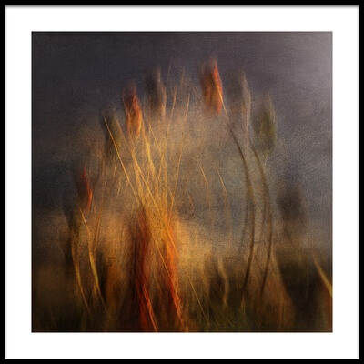 Buy this art print titled The Wheel by the artist Graeme