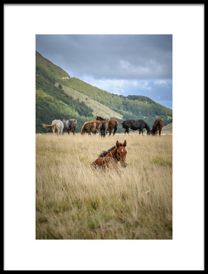 Buy this art print titled The Youngest by the artist Alessandro Passerini