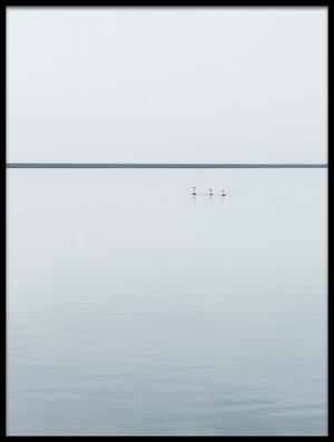 Buy this art print titled Three Swans by the artist Viggo Johansen
