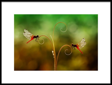 Art print titled Together In Beautiful by the artist Abdul Gapur Dayak