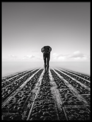 Buy this art print titled Tomorrow Man by the artist Christophe Staelens