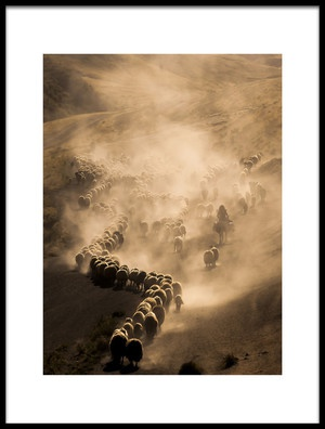 Buy this art print titled Tozlu Yolculuk by the artist murat Cacim