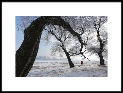 Art print titled Tree and Frozen Land by the artist Libby Zhang
