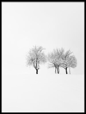 Buy this art print titled Tree and Silence by the artist amir bajrich