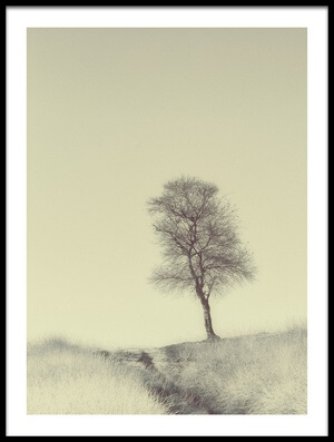Buy this art print titled Tree On Top by the artist Jaap van den Helm