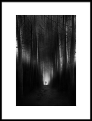 Art print titled Treelined Avenue by the artist Nicodemo Quaglia