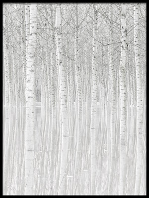Buy this art print titled Trees by the artist Aglioni Simone