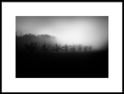 Art print titled Trees In the Mist by the artist Nic Keller