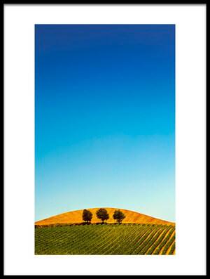Art print titled Tuscany by the artist Aida Ianeva