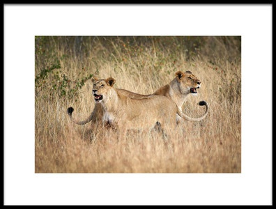 Art print titled Twins by the artist Bjorn Persson