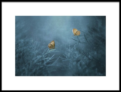 Art print titled Two Butterflies by the artist Edy Pamungkas